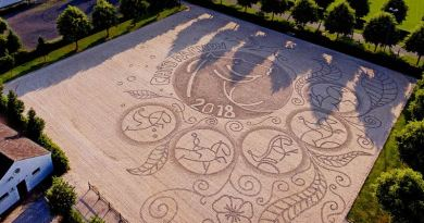 Equestrian art breaks new ground: A sand arena