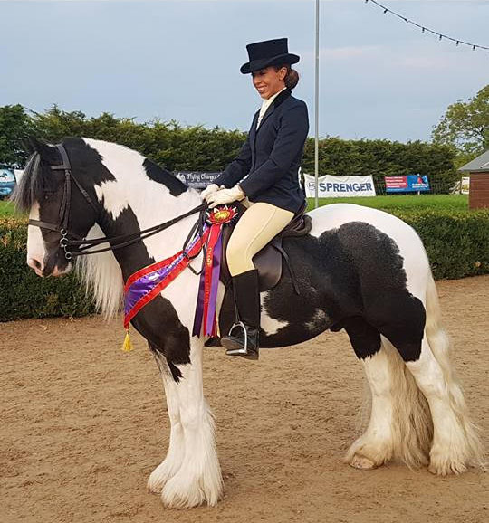 Jack won the Gypsy Cob of Great Britain at the Royal London Show last year.