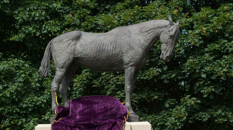 "The statue of the war horse has been dubbed ""Poppy""."