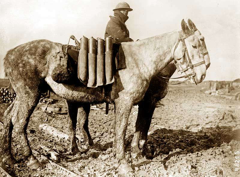 The mosiac has been created using an image of WW1 horses transporting munitions at the Western Front.