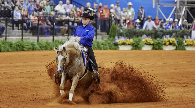 USA's biggest reining groups kicked out of FEI - Horsetalk co nz