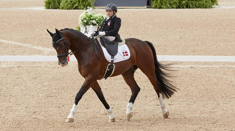 Danish Paralympian Stinna Tange Kaastrup secured her first World Championship title at the FEI World Equestrian Games onHorsebo Smarties.
