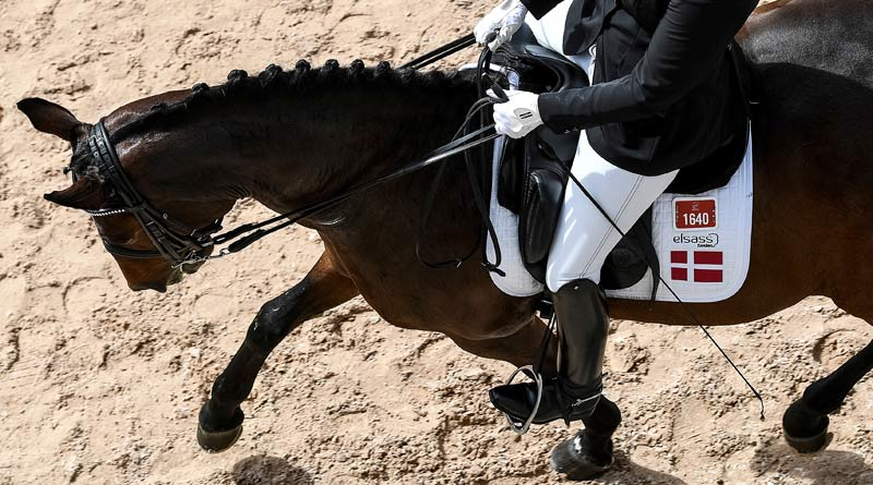 Para dressage rider Susanne Jensby Sunesen of Denmark on CSK's Que Faire at the World Equestrian Games in North Carolina, USA. © FEI
