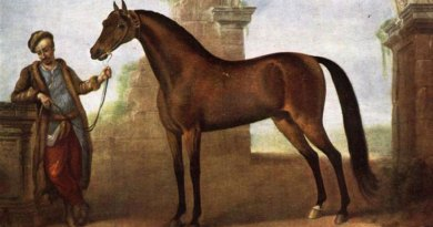 Genetic testing casts fascinating light on the maternal origins of the Thoroughbred