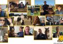 Horse vets reveal why they love their job