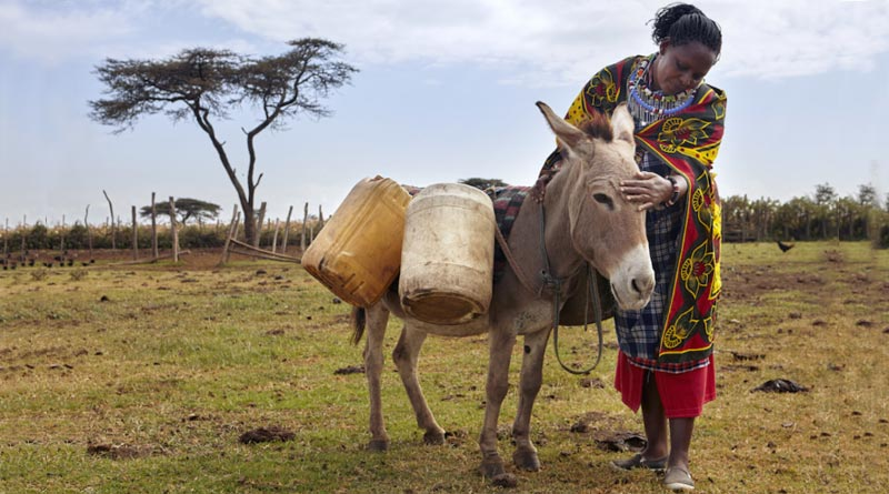 Brooke USA has helped hundreds of women and their donkeys in Kenya.