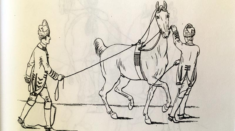 From A Method of Breaking Horses and Teaching Soldiers to Ride, by Henry Herbert, The 10th Earl of Pembroke.