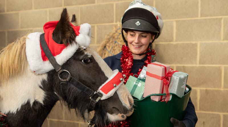 World Horse Welfare, and he's fronting the charity's 2018 Christmas campaign.