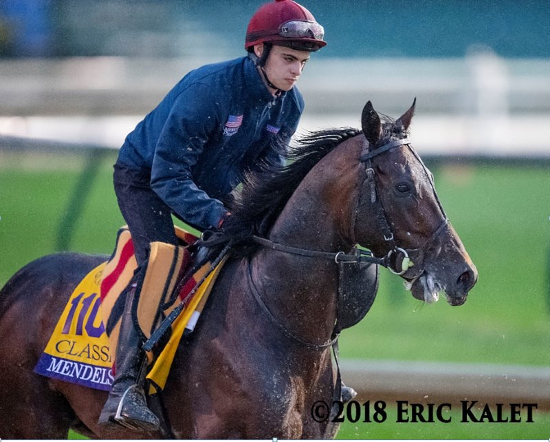 Mendelssohn at Churchill Downs before the Breeders' Cup