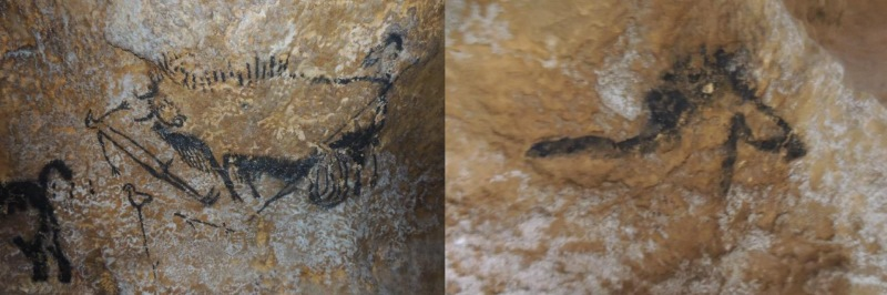 The Lascaux Shaft Scene. At left is the main panel on the main wall with the rhino, duck/goose and disembowelled aurochs/bison, with a dying man. At right is the horse on rear wall. Photos: Coombs et al.