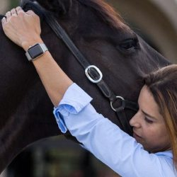 Dr Natalia Novoa working on a horse's TMJ (temporomandibular joint). © Jump Media