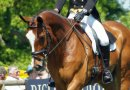 FEI allows snaffle bits for 1-2* dressage events