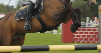 Fine, suspension after horse tests positive for caffeine at South American event