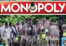 A Monopoly on donkeys? Equine theme for popular trading game