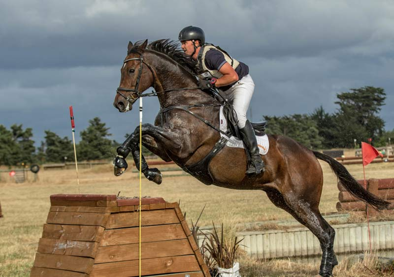 Corey Wood and Pick Up Line competing recently in Canterbury.