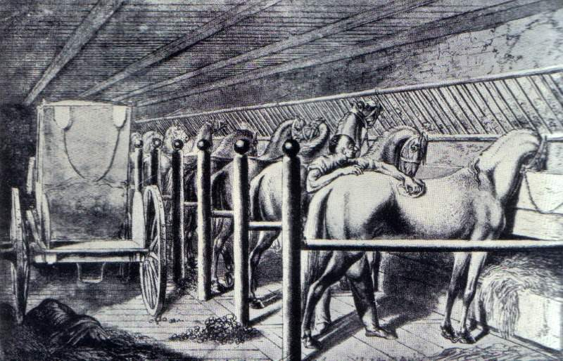 A 1773 illustration of tie stalls in a stable for horses. Image: Daniel Chodowiecki, public domain