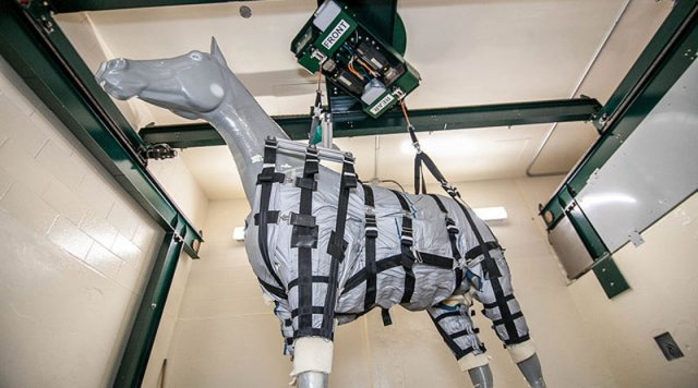 A rehabilitation elevator together with a harness scheme would utilization a figurer Rehab elevator together with harness scheme volition endure a get-go for injured horses