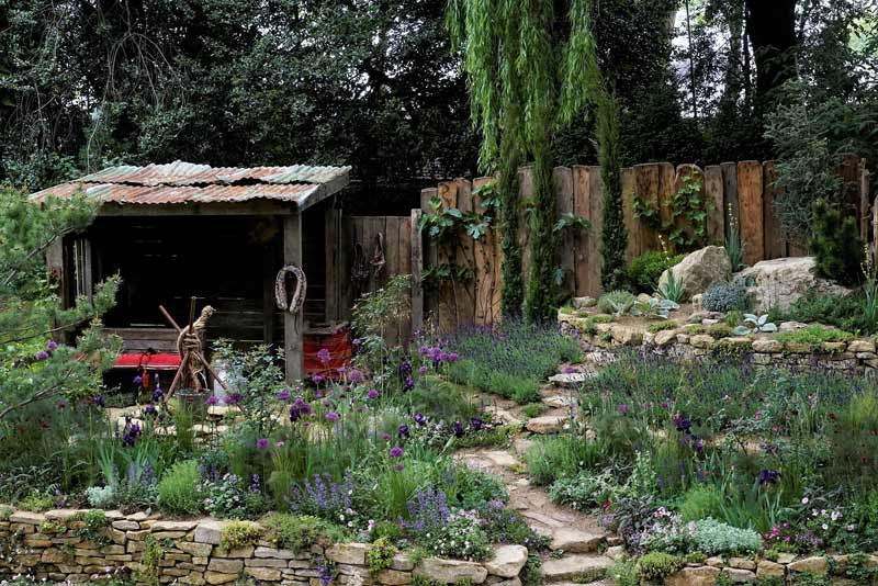"""Donkeys Matter"" has won the People's Choice Award at the Chelsea Flower Show."