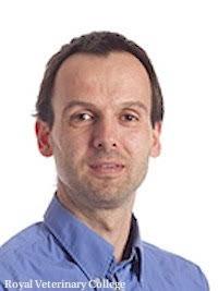 Dr-Ing Thilo Pfau