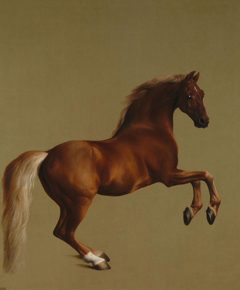 Whistlejacket, by George Stubbs,  was painted in about 1762 and was about a life-sized portrayal of the Marquess of Rockingham's racehorse.