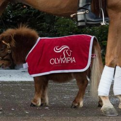 © Olympia Horse Show