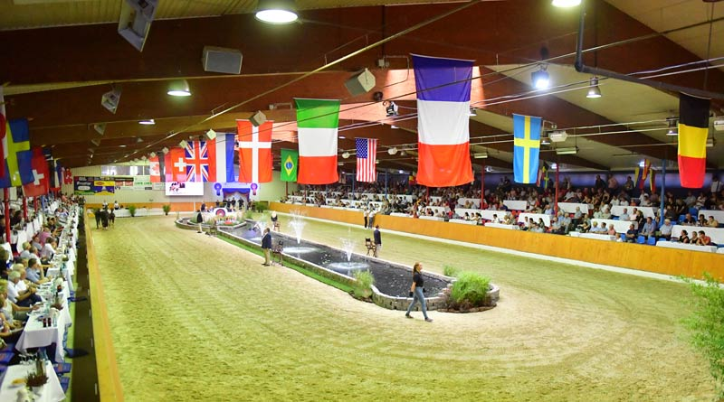 Beach flair in Vechta: Buyers from around the world came to the Oldenburg Horse Center Vechta.