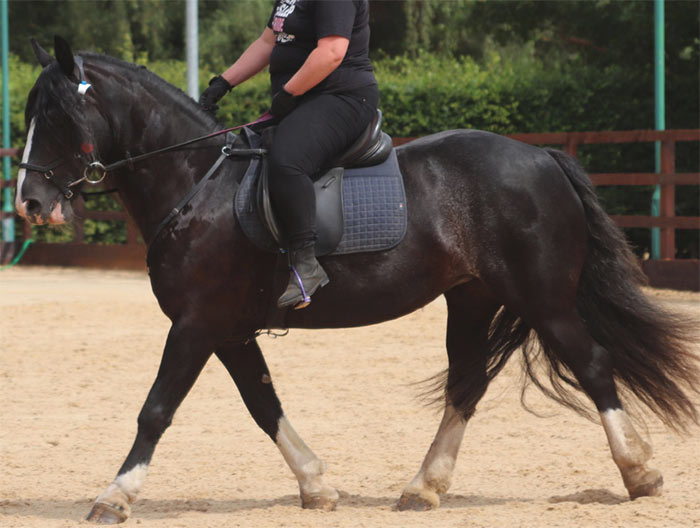 This rider is sitting on the cantle of the saddle, overloading the back of the saddle.