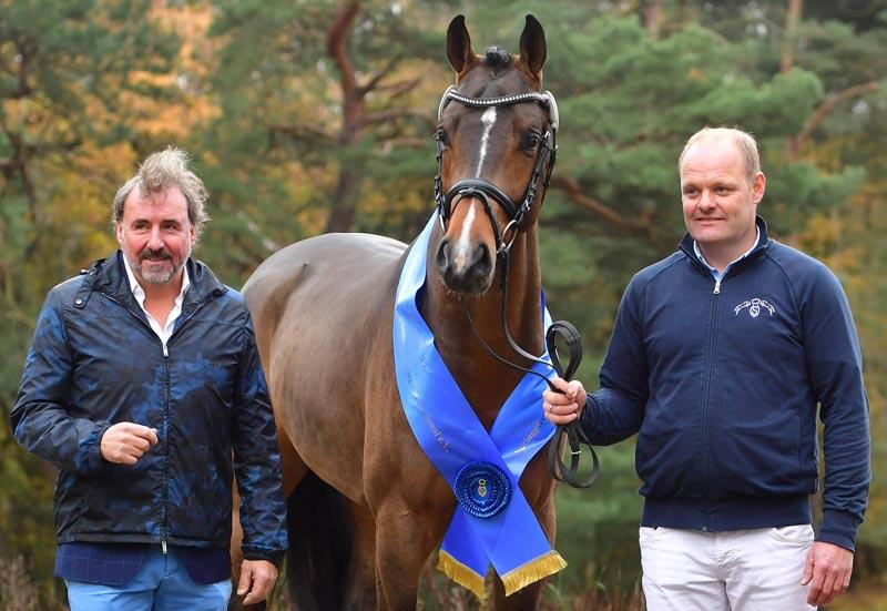 A son of Conthargos won the Springpferdezuchtverband Oldenburg-International (OS) title.