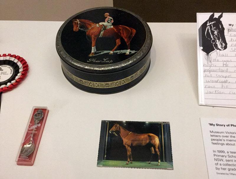 Items of Phar Lap memorabilia at Melbourne Museum.