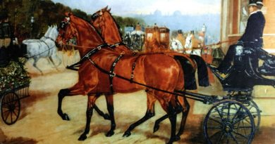 The Dash of Blood: A History of the Yorkshire Coach Horse