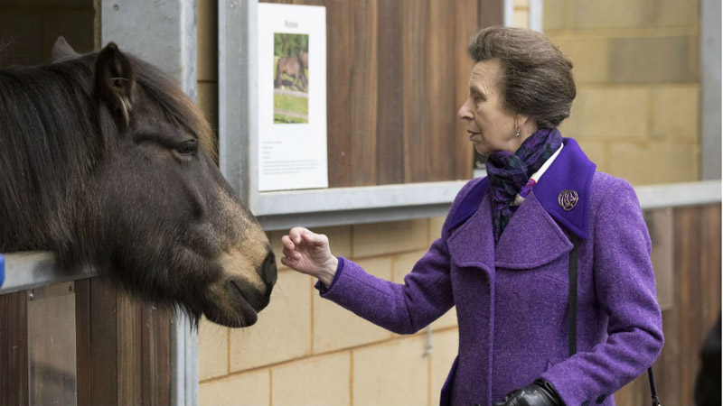 Princess Anne, the Princess Royal, with a patient at the University of Surrey's School of Veterinary Medicine.