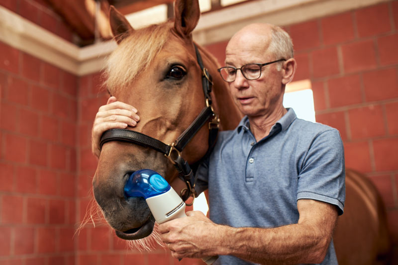 The aerosol is inhaled through the left nostril while the other nostril remains open. There is sufficient air flow during inhalation and the one-way valve in the device is not stressed because the horse can exhale through the open nostril at any time.