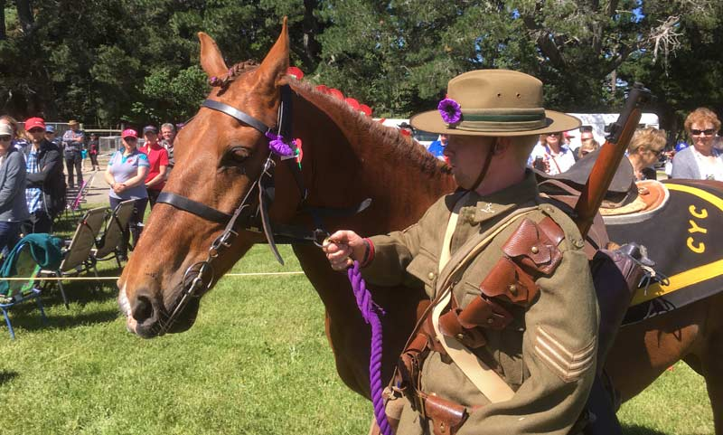 A horse and soldier at Anzac Day commemorations in North Canterbury, New Zealand in 2018.