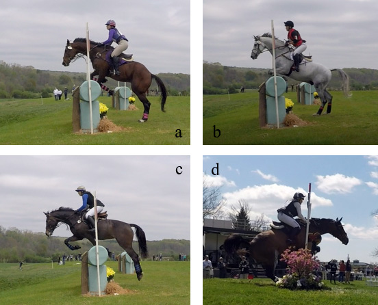 Examples of (a) lower limb incidental impact; (b) incidental hoof strike or lower leg impact; (c) foreleg contact in the critical range, such as for competitors at the highest risk for a rotational fall (here did not rotate); (d) crash contact with the horse's chest sliding into the fence (did not clear the obstacle).