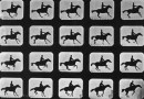A real puzzler: Muybridge's jumping horse made into jigsaw