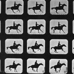 © Eadweard Muybridge/National Archives