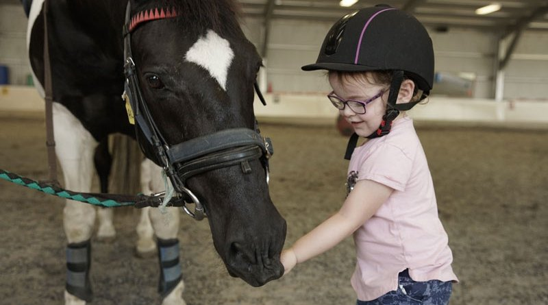 EquiPotential aims to meet the ever-increasing demand for therapeutic riding programmes in New Zealand.