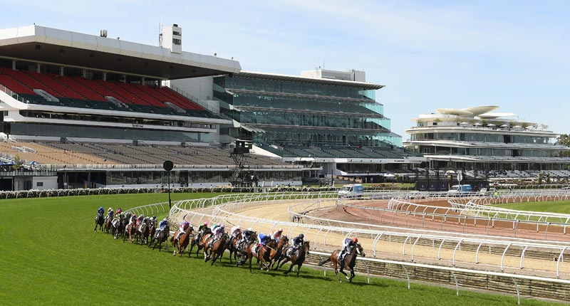 Twilight Payment leads the field around the first bend in the Melbourne Cup.