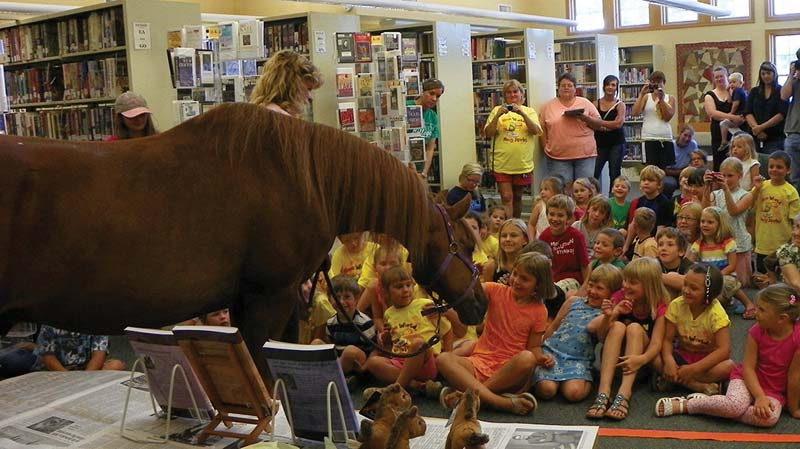 Therapy horse Clifford on a school visit.