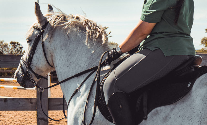 A new method of scoring horses and ponies with endocrinopathic-laminitis has been developed.