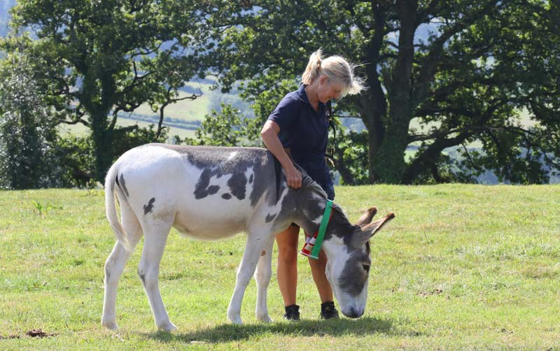 Casey with his groom, Maria Hughes.