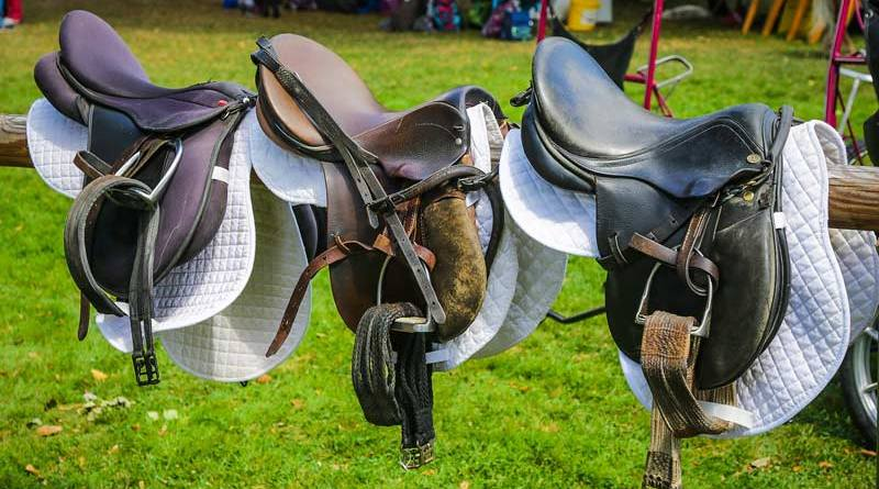 British tests showed that the Covid-19 virus lasted the longest on a polyurethane saddle, but evidence suggests that more porous materials such as leather may be even less friendly to the virus.
