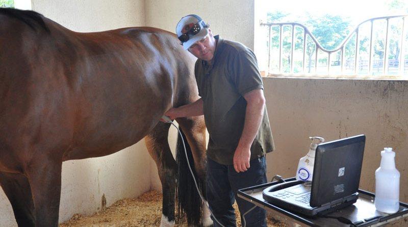 Dr Peter Heidmann evaluating a patient through an abdominal ultrasound.