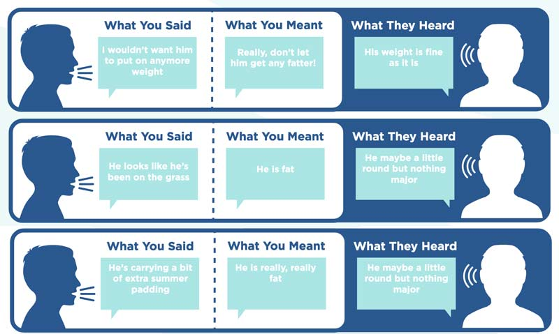 "Part of BEVA's new ""What you say isn't what they hear"" information for veterinarians."