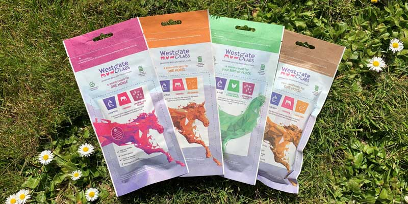 Four retail test kits are available in the Westgate range; horse worm egg counts, pinworm tests, avian worm counts and faecal sand tests.