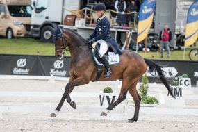 Michael Jung (GER) and Chipmunk have taken the lead after the dressage phase of the Tokyo 2020 eventing competition.