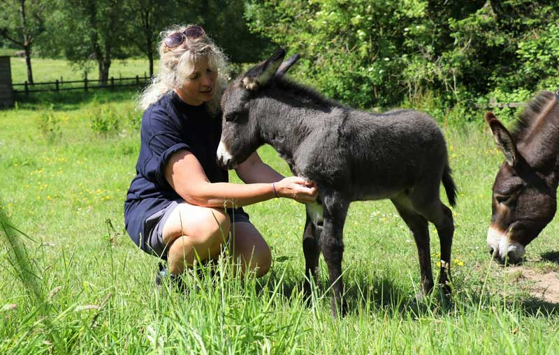Lisa Cole with the foal she helped deliver.