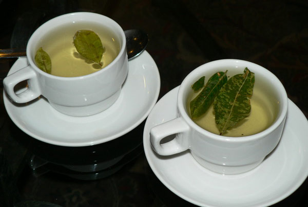 Two cups of coca tea.