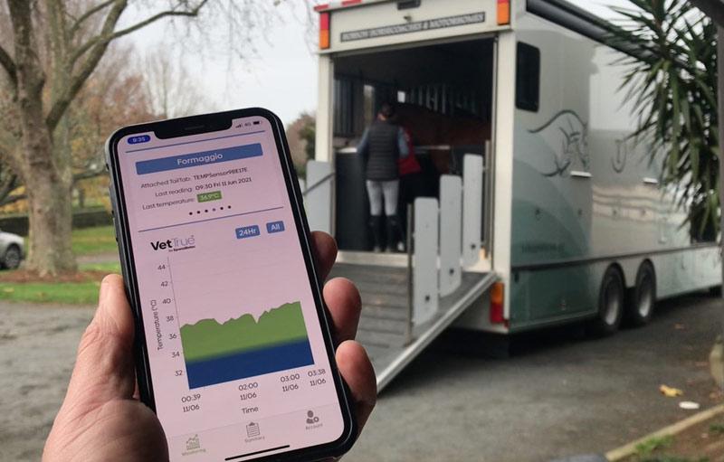 The VetTrue app monitors the horse's temperature continuously.