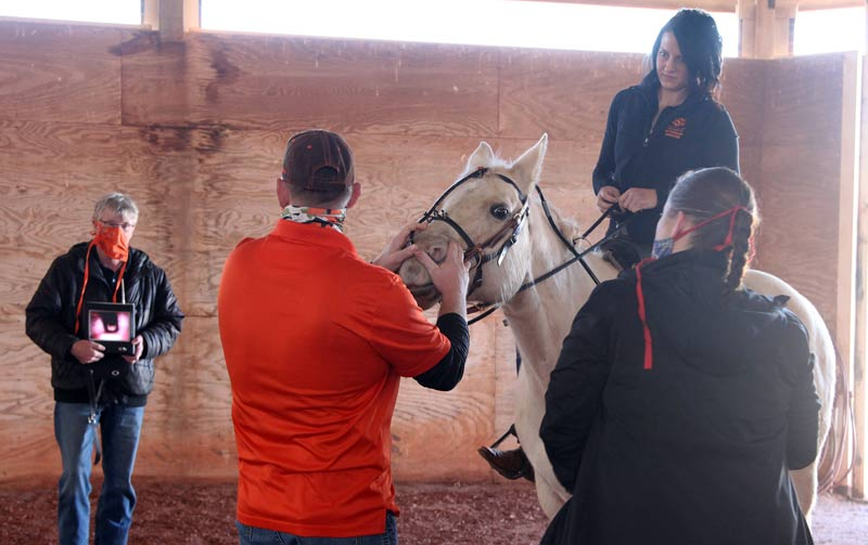 Dr Mike Schoonover (center) adjusts the position of the endoscope to produce an optimal image on the wireless display monitor held by Dr Hugh Duddy (left) while Dr Kelsey Jurek (mounted) and veterinary technician Cherlyn Simpson (right) prepare to exercise the horse during a dynamic endoscopy exam.
